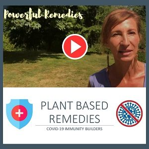 Plant Based Corona Immunity Builders