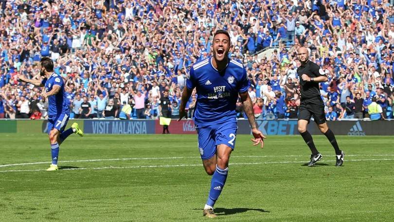Cardiff City vs Fulham Preview